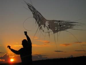 Aquiloni in volo durante il Susak Air e Art Festival