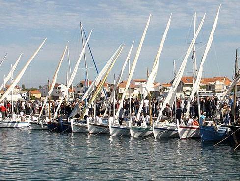 partenza Regata Latin Sail Murter