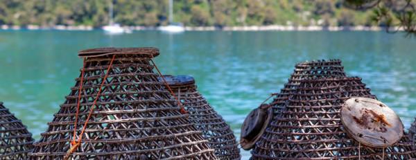 isola Mljet pesca tradizionale