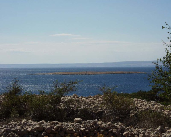 Isola Krk Punat località Negrit