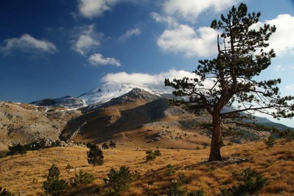 Parco Naturale del Velebit