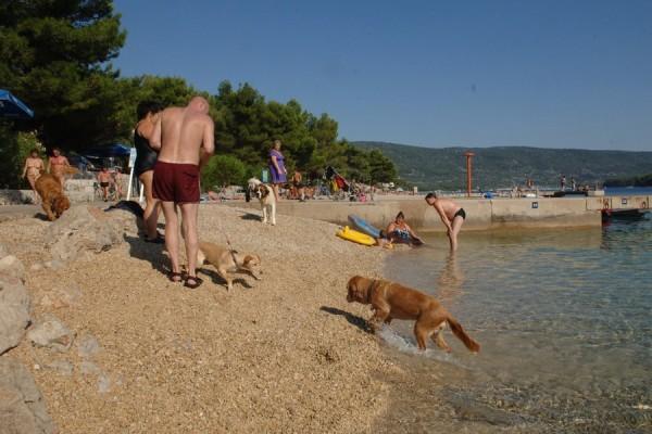 spiaggia per cani a Spalato
