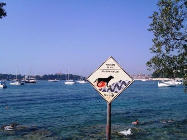 spiaggia per cani Lone a Rovigno