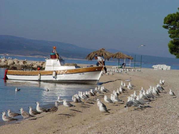 Promajna Riviera di Makarska