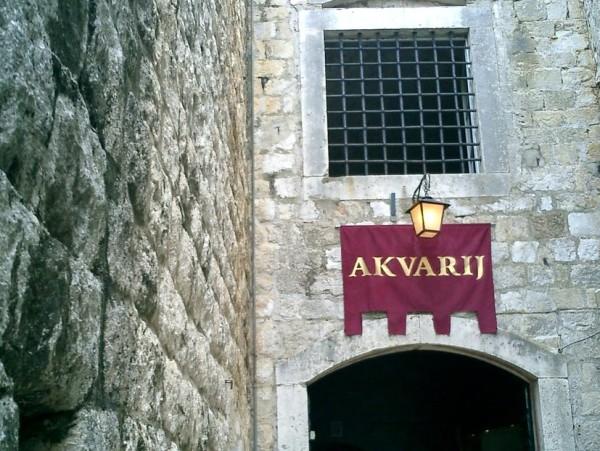 acquario di Dubrovnik nella Fortezza Sveti Ivan