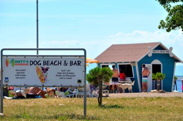 spiaggia per cani a Crikvenica Monty's